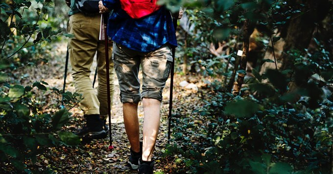 Planinari u šumi