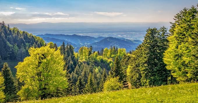planinski pejzaž
